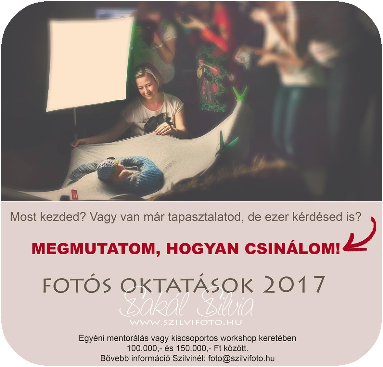 oktatas2017_02